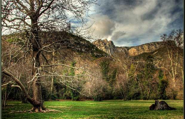 Parque de San Pons