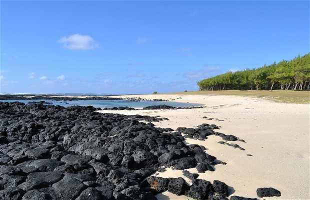 Playa de Palmar