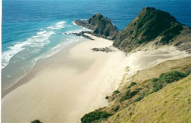 Reinga Cape