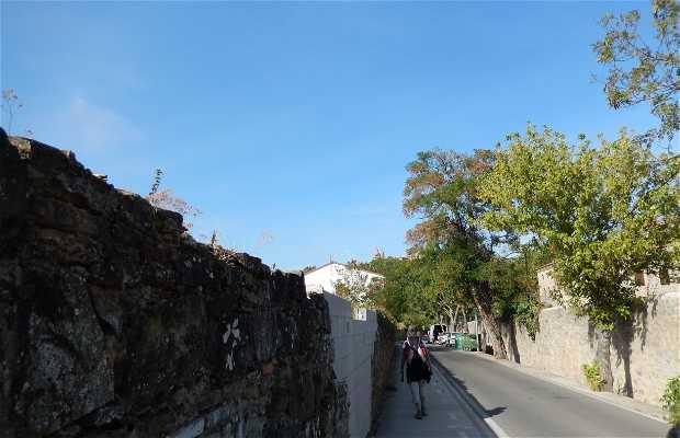 """Cammino di Santiago """" Pirenei a Finsterra"""""""