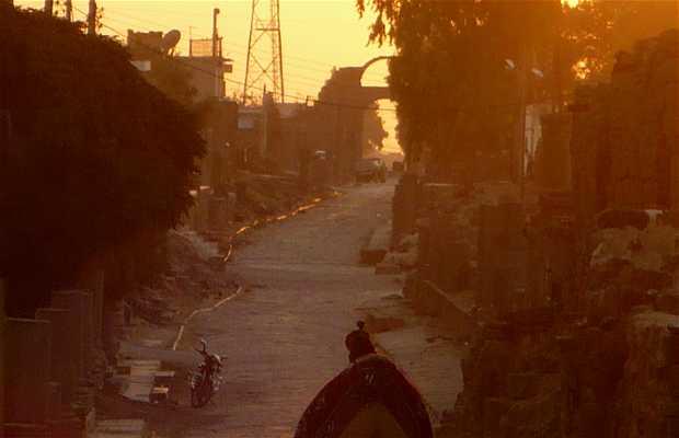 Transport à Bosra