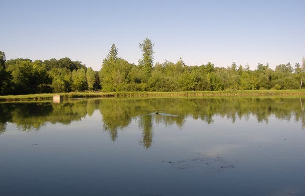 The Pond of the Monks