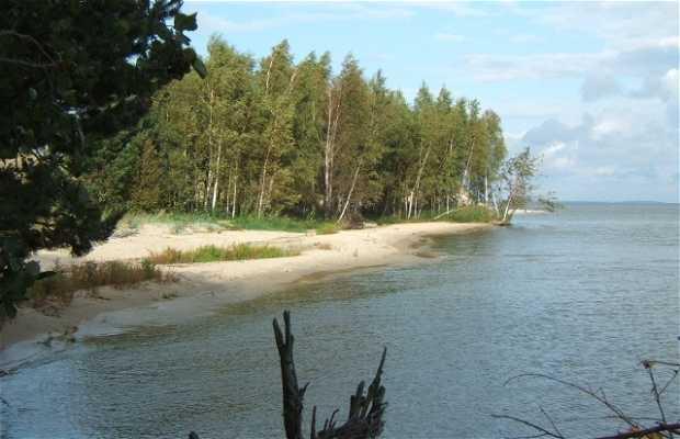 Dunes de Neringa, Lituanie