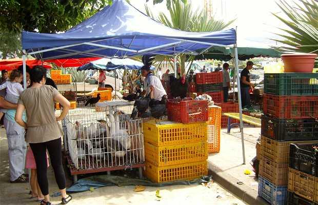 Mercado de Saint Pierre
