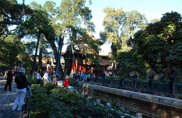 Jardin imp rial yu hua yuan p kin 1 exp riences et 4 for Jardin imperial