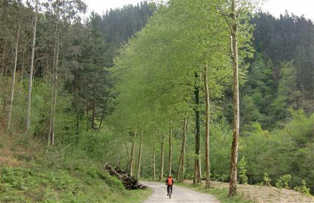 Via verde Plazaola-Leitzaran