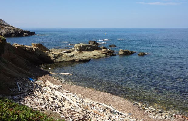 Playa de Mute