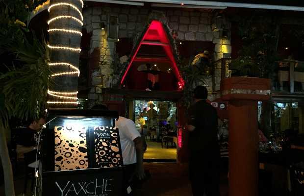 Yaxche mayan cuisine