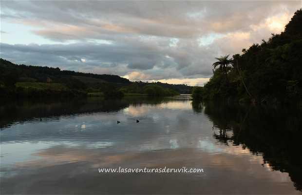 Little Waipa Reserve