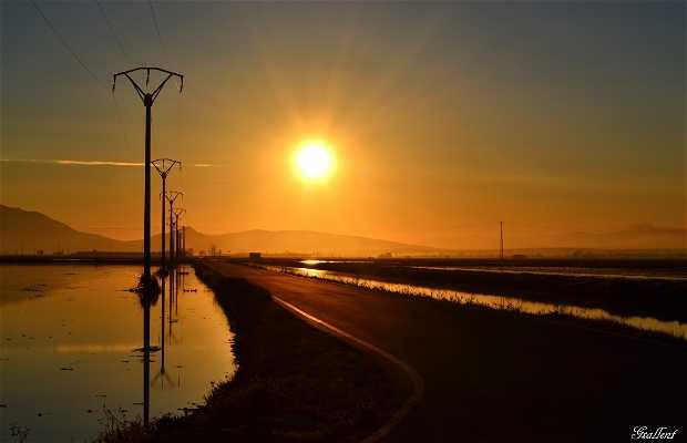 Coucher de soleil sur le Delta de l'Ebre