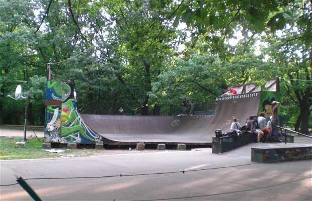 Skatepark Herastrau