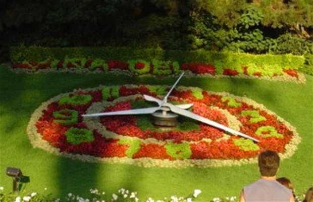 Orologio di fiori