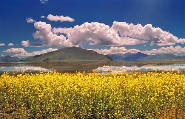 El lago Yamdrok