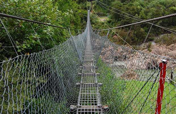 Puente colgante más largo en Nueva Zelanda