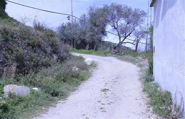 Sendero de Benarrabá a Algatocín