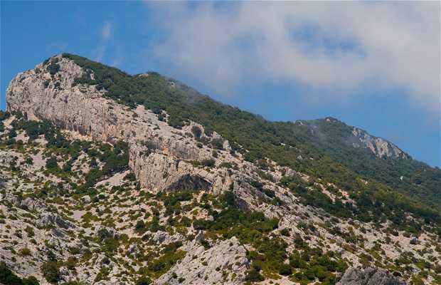 Entre Cala Gonone y Playa Cartoe