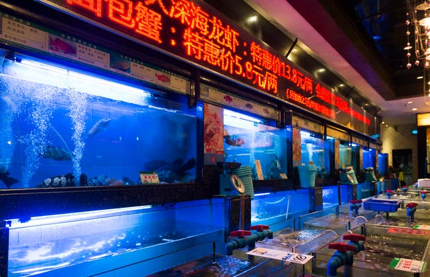 Restaurante Qiaomeishijia