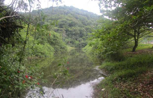 Cascada Prainha Branca