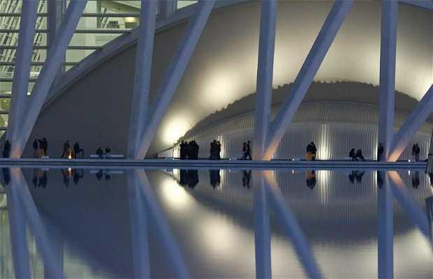 Museu das Ciências Príncipe Felipe