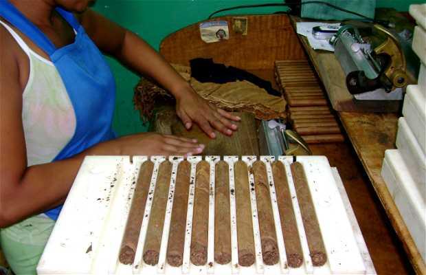 Tabaqueras Cumaná