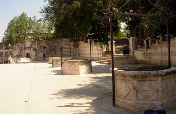Trg Pet Bunara - Piazza dei cinque pozzi