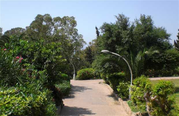 Giardini di via 20 di agosto