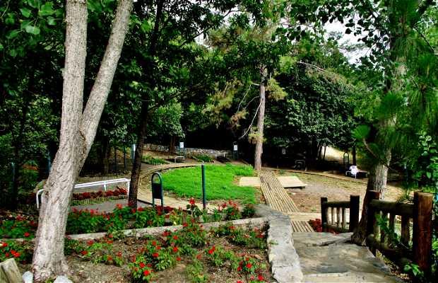 Parc écologique Chipinque San Pedro