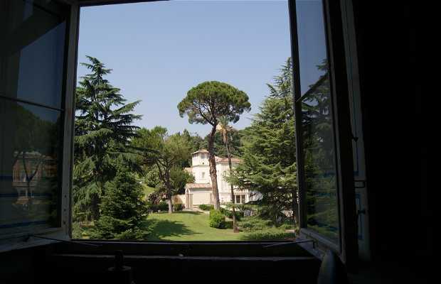 Giardini del Vaticano