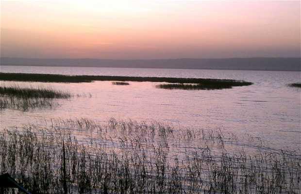 Amanecer en el Lago Awassa