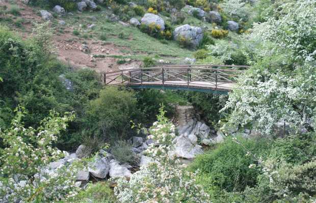 Birth of the Castril River