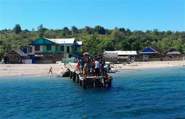 Isole di Moyo e Sumbawa