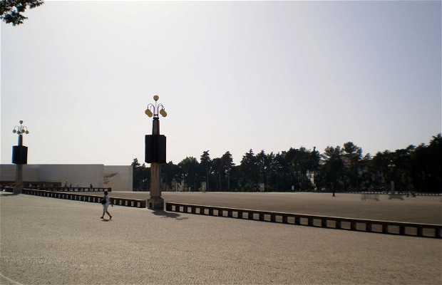 Praça Pio XII