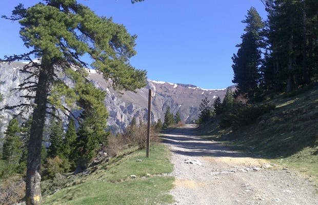 Ruta del Trencapinyes
