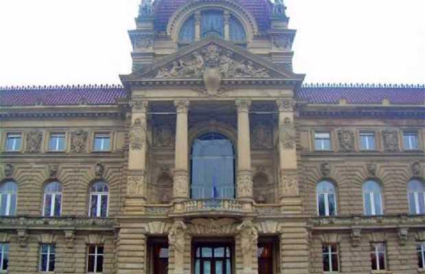 Palacio del Rhin