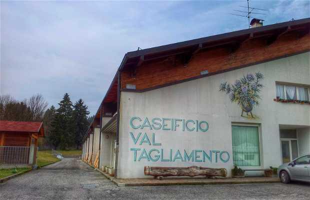 Caseificio Val Tagliamento Soc.Coop.R.L.