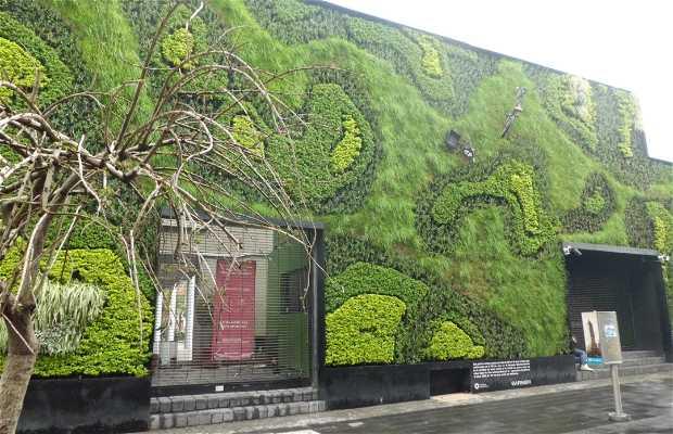 Jardín Vertical de Calle Regina