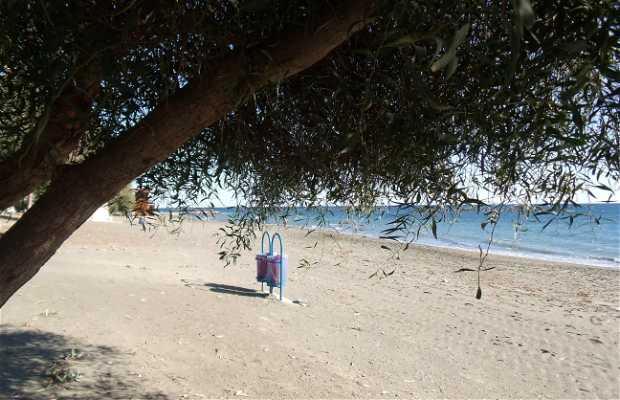 Playa Daoudi 1