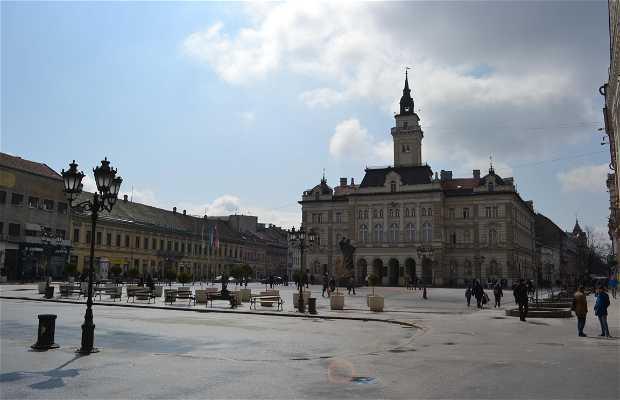 Palazzo del Municipio di Novi Sad