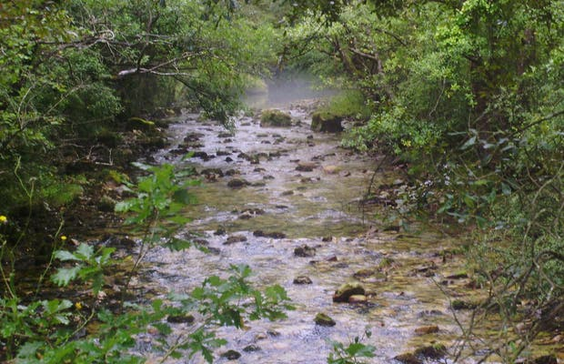 Nacimiento de Río Purón