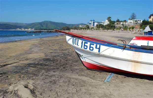 Papudo Beach