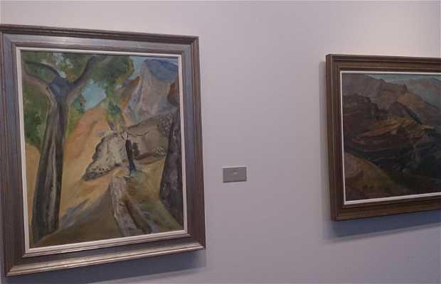 Museo de Bellas Artes Gravina (MUBAG)