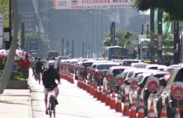 Carril bici - Tramo Paulista Centro