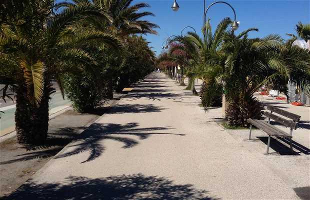 Camino Maritimo San Benedetto del Tronto