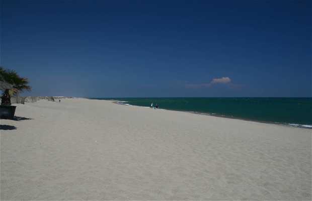 La costa arenosa