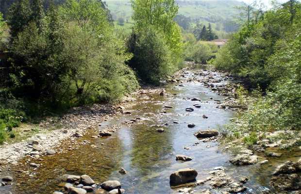Miera River