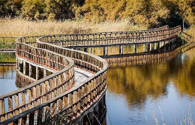 Parc National Tablas De Daimiel