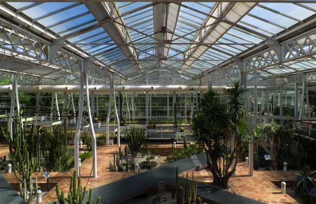 Greenhouse Arganzuela-Crystal Palace