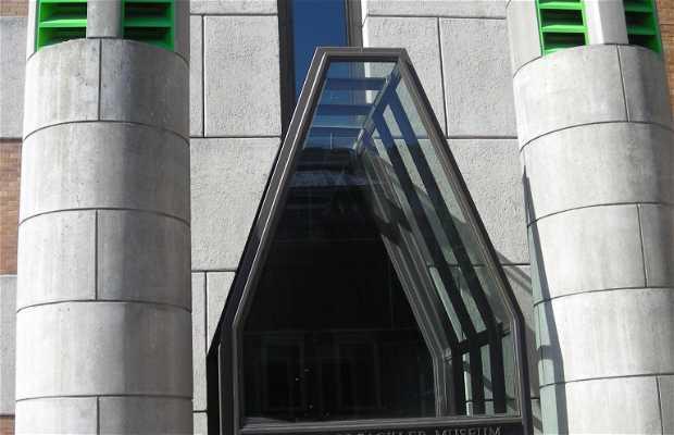 Arthur M. Sacler Museum of Art