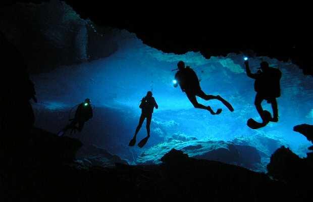 Buceo en Cenotes de la Riviera Maya