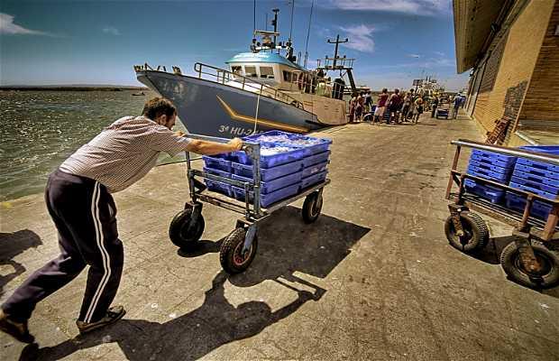 Port de l'ile Cristina